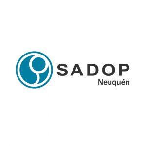 Lee más sobre el artículo SADOP Seccional Neuquén repudia los dichos vertidos por el gobernador Omar Gutiérrez en relación a la actividad escolar